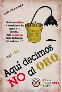 No al Oro, Alianza Mundial No al Oro et Red Mexicana de Afectados por la mineria, 2014