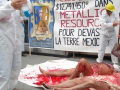 Die in contre les investissements de CIBC dans Metallica ressources, 23 août 2007, Isabel Orellana